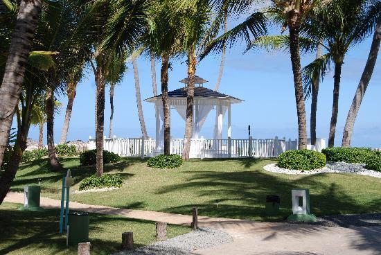 Paradisus Punta Cana: jardin