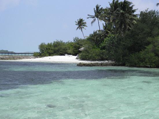Ocean Villas Hudhuran Fushi: la spiaggia