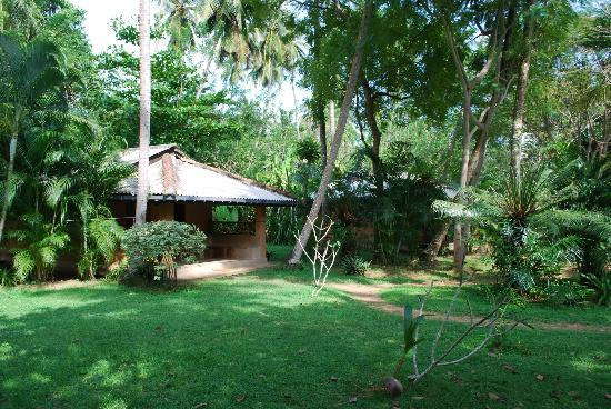 Surya Garden Guesthouse: The garden with bungalows