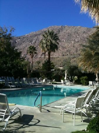 The Chase Hotel of Palm Springs: the view when you exit the lobby