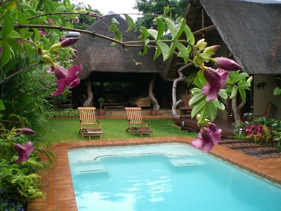 Mhlati Guest Cottages: Pool Area