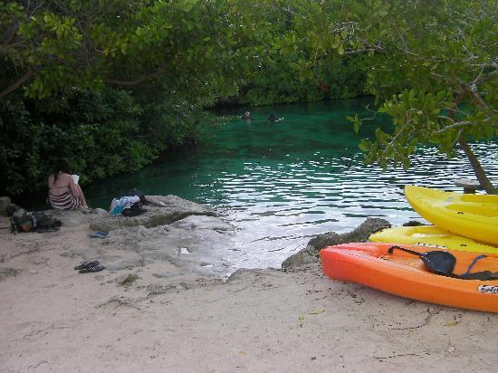 Blue Sky Hotel: Lagoon side of cenote - amazing!