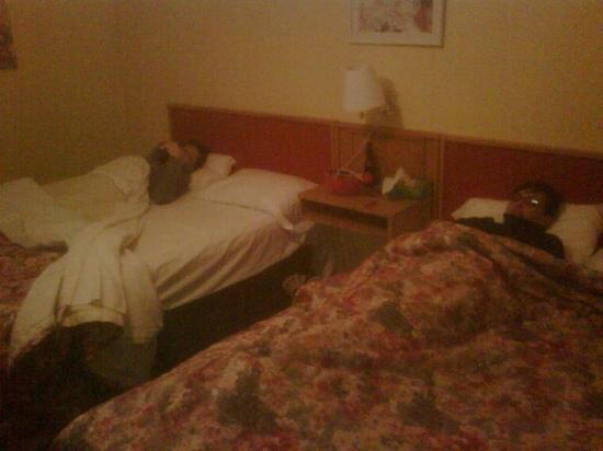 La Roma Motel: brrrrrr......