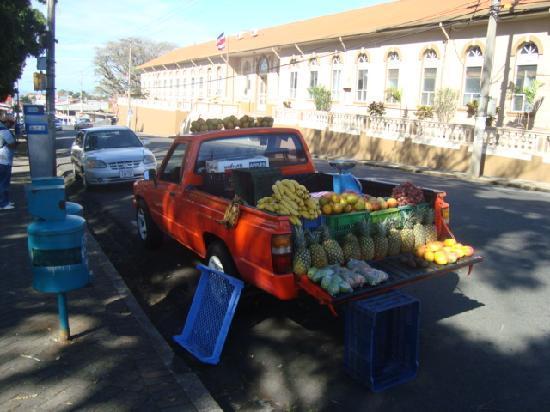 Vida Tropical B and B: fresh fruit near at Parque Palmares