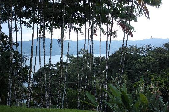 View of Lake Arenal from Villa Decary