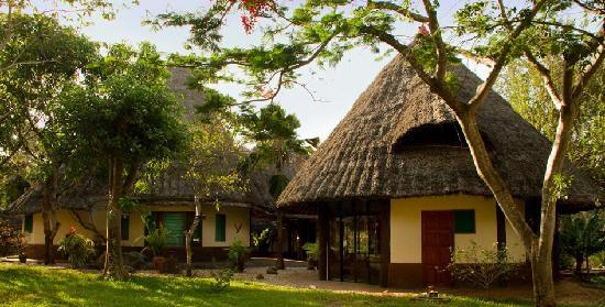 Forest Dream Resort : Private cottage in swahili style