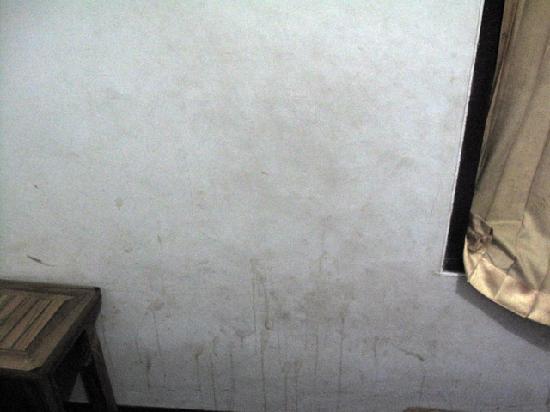 Hotel Melati Viktor: Dirty dirty walls