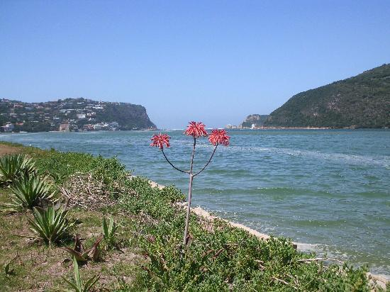 The Knysna Belle: view outside Kynsna Belle