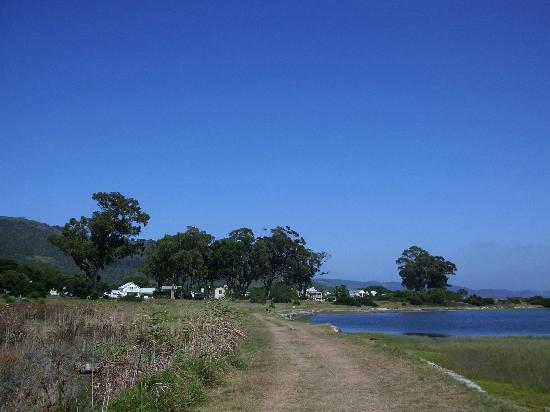 The Knysna Belle : lovely walks