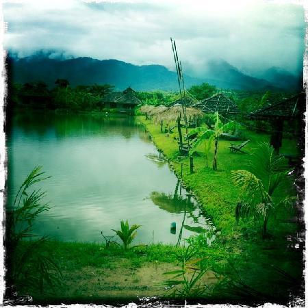 写真Bueng Pai Farm枚