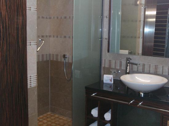 Spirit Hotel Thermal Spa: The Bathroom