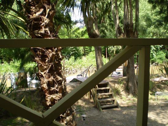 Posada Isla Escondida Tigre: vista desde mi cuarto