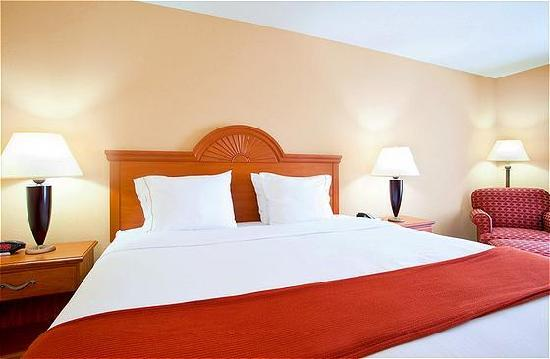 Holiday Inn Express Hotel & Suites Lake Zurich-Barrington : Standard King Room