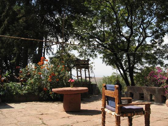 Seven Olives Hotel: Terrace daytime