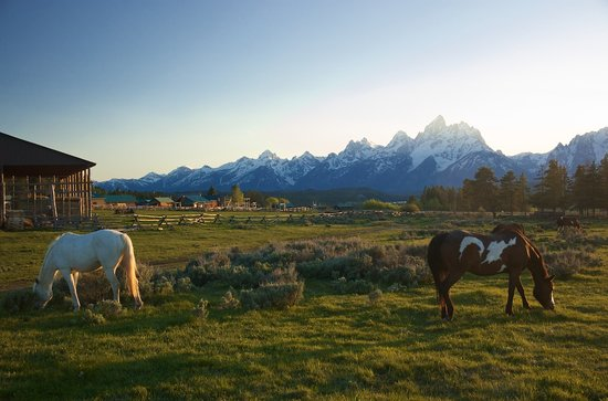 Triangle X Ranch: Triangle X is in a great location and has unmatched views of the Teton Mountain range