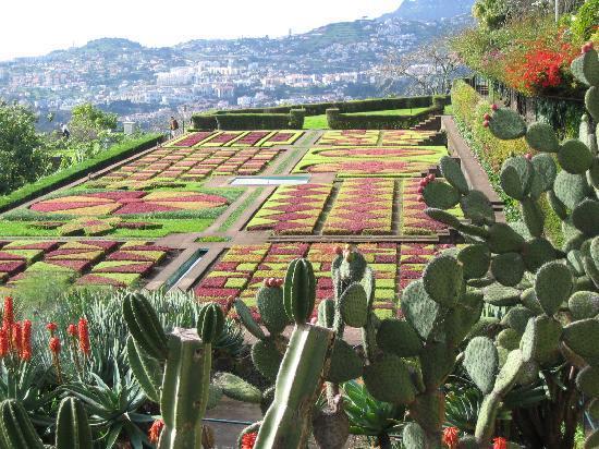 Madeira Botanical Garden : Vue dans le jardin