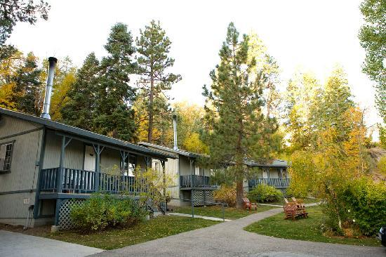 Pine Knot Guest Ranch: Cabins in fall