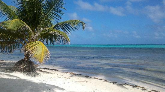 Ak'bol Yoga Retreat & Eco-Resort: Beachfront