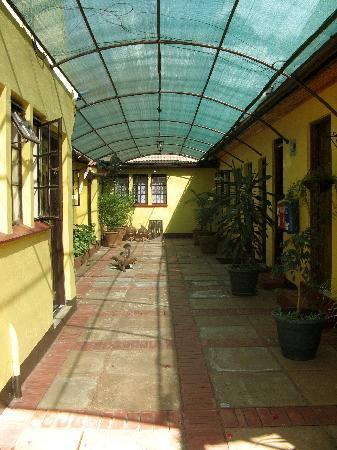 Godial's Bed & Breakfast: Godials Courtyard