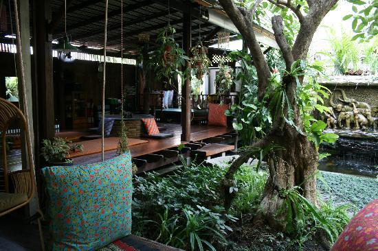 Pak Chiang Mai: giardino