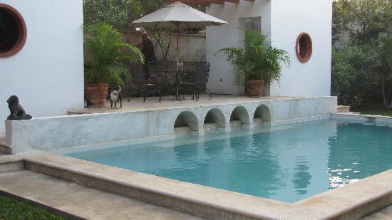 Casa Santiago: our beautiful pool and outdoor shower