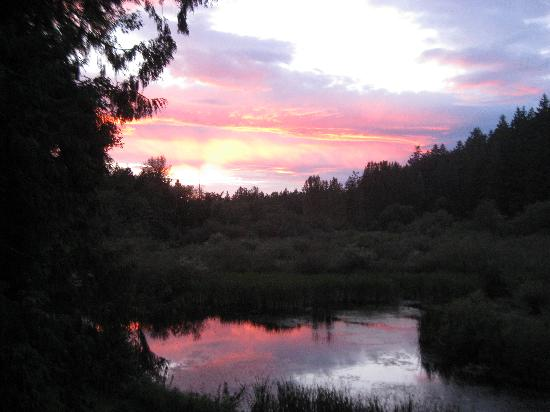 Alder Road Retreat: Sunset over the pond