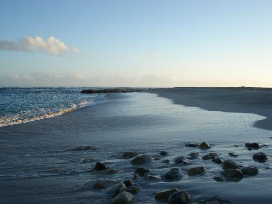 Hotel Beach House Playa Dorada: Gorgeous Beach