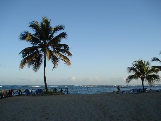 Hotel Beach House Playa Dorada : More gorgeous beach