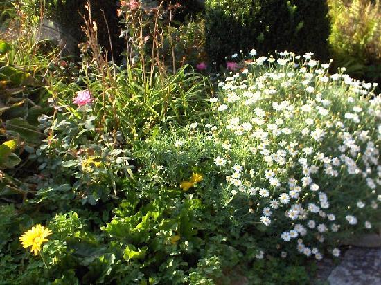 High Hampton Inn & Country Club: Gardens