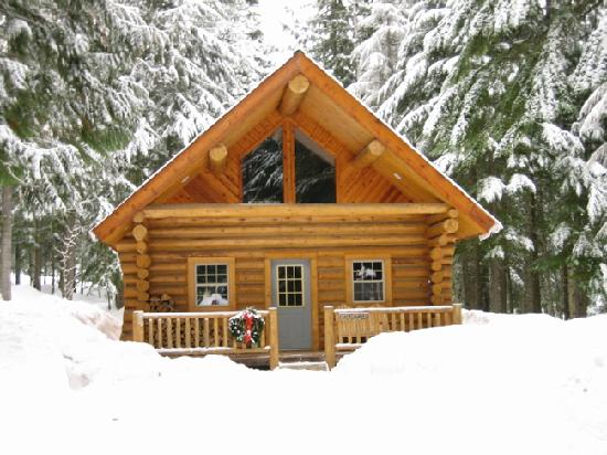 Sandpoint, ID: log cabins in the woods