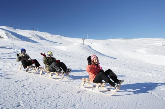 Snow Park NZ: Sledding fun