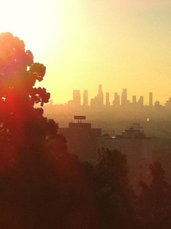 Dresden B&B: Runyon Canyon is nearby, this is sunrise