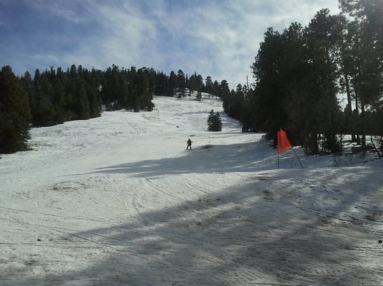 Williams, AZ: The ski hill.....