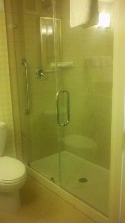 Hilton Garden Inn Schaumburg: Shower