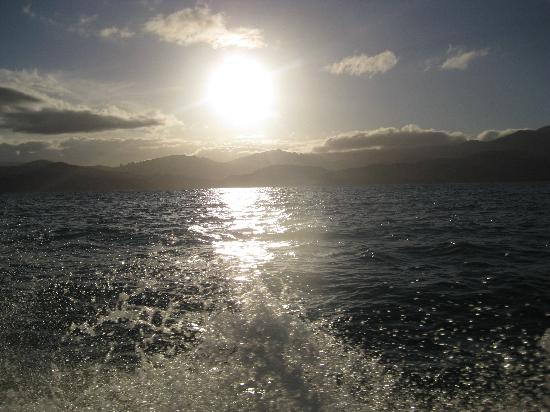 Sea Limousines: journey home after a fantastic trip