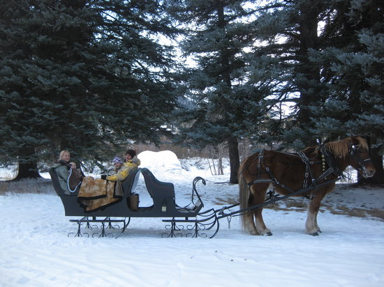 ‪Aspen Carriage and Sleigh Day Tours‬