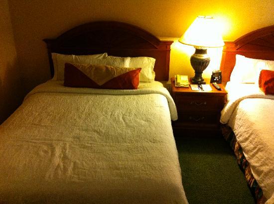 Hilton Garden Inn Springfield: Hilton Garden Inn Beds