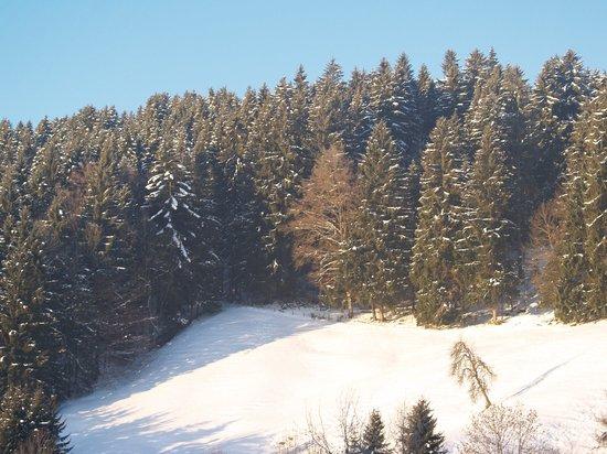 Lindner Parkhotel & Spa Oberstaufen: View from bedroom