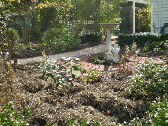 Harrogate Gardens Motel: tranquil gardens