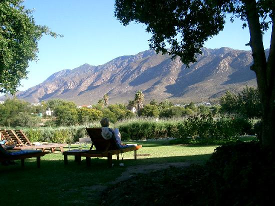 Montagu Vines Guesthouse: The evening sun!!
