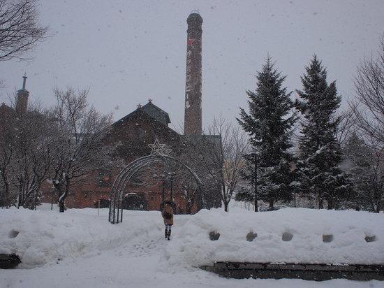Sapporo Beer Garden: 外は雪