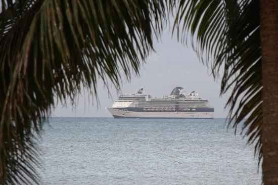 Boiled Frog Guesthouse: watching a cruise ship come in, from the deck