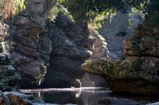 Forest Edge Nature-lovers' Retreat : Swim in Drupkelders Rock pools