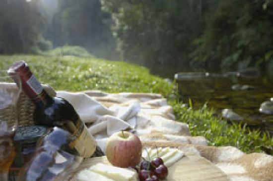 Forest Edge Nature-lovers' Retreat : Picnic at your cottage or by Jubilee creek