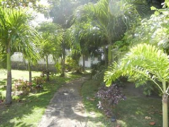 Philsha's Guest House: One of the paths to Philsha's