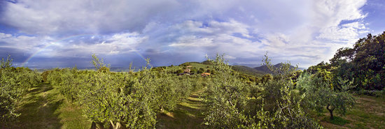 Country House Montali: view
