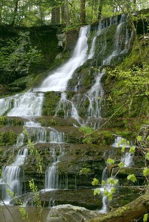 Glen Falls House: Bridal Veil Falls
