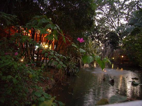 Kiree Thara Boutique Resort: The pond at dusk showing the part of the lit dining area