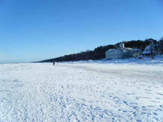 The Snow Covered Beach At Jurmala