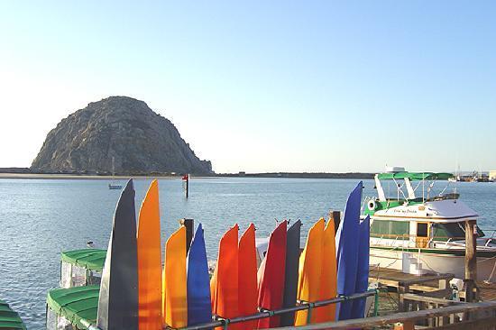 456 Embarcadero Inn & Suites: Kayaking in Morro Bay